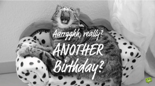 Aarrgghh, really? Another birthday?