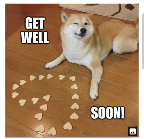 Get well soon - Dog heart Meme.