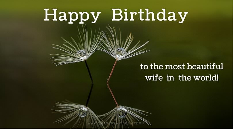 happy birthday to the most beautiful wife in the world