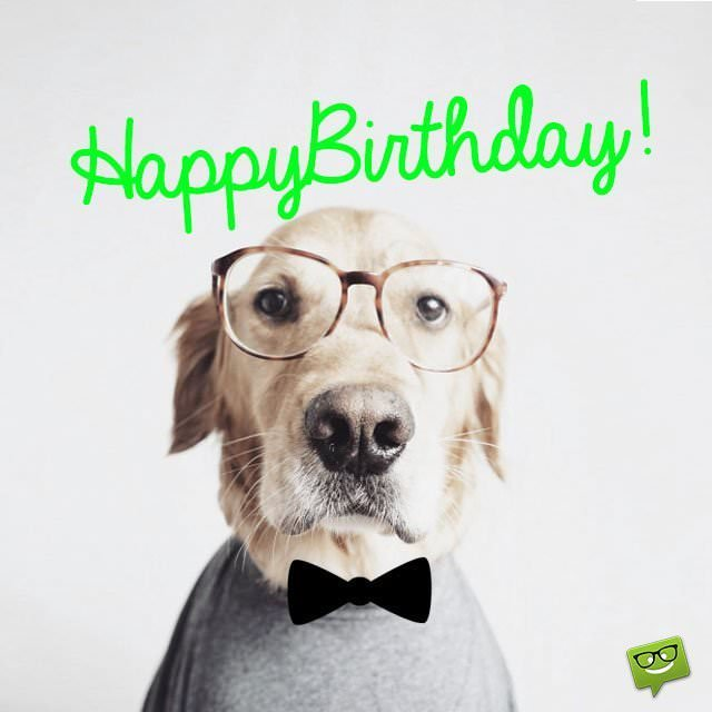 50 Funny Cute & Romantic Birthday Wishes For Your Boyfriend
