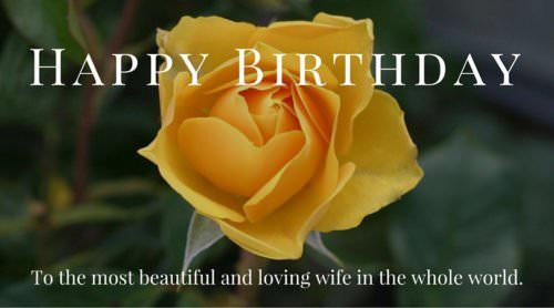 Happy Birthday to the most beautiful and loving wife in the whole world.