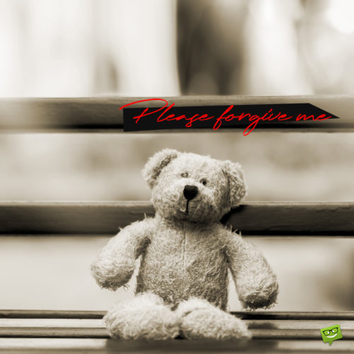 I'm sorry message on image with sad teddy bear.
