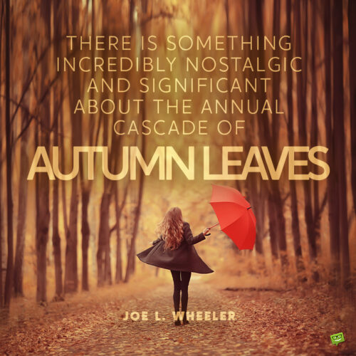 Quote to use as an autumn caption.