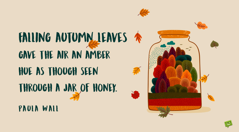 What Does The Color of Leaves Say? | 87 Autumn Quotes