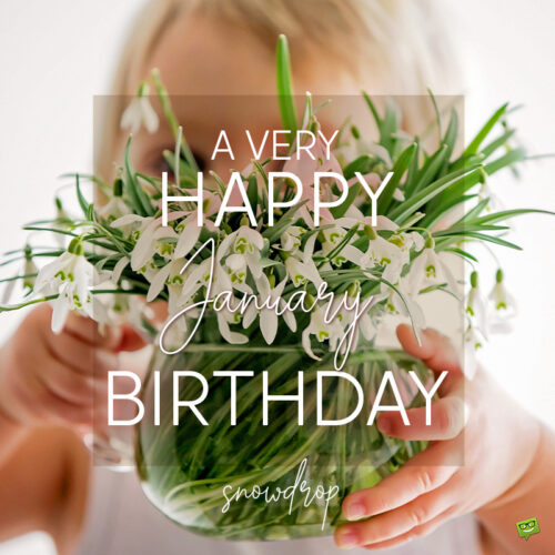Birthday wish on image with snowdrop flowers for those born in January.