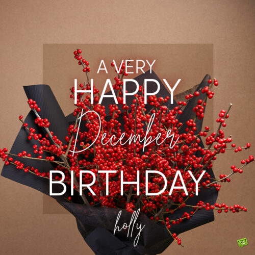 Birthday wish on image with holly flowers for those born in December.