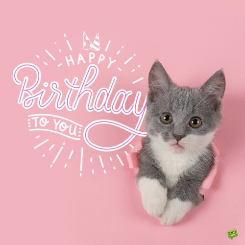 Cute birthday image to share with a loved one.
