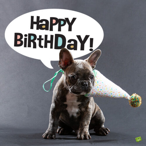 Cute birthday image to share with a friend.