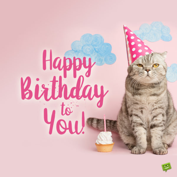 Happy birthday image for friend who loves cats.