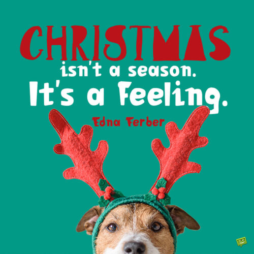 Cute Christmas quote to inspire the season's feeling.