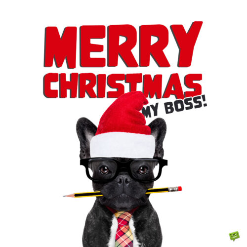 Very funny Christmas image with a wish for boss.