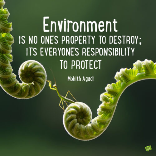 Quote to motivate the protection of the environment.