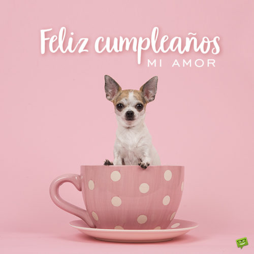 Birthday wish on a picture of a puppy in a mug.