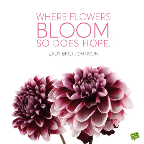Flower quote for inspiration.