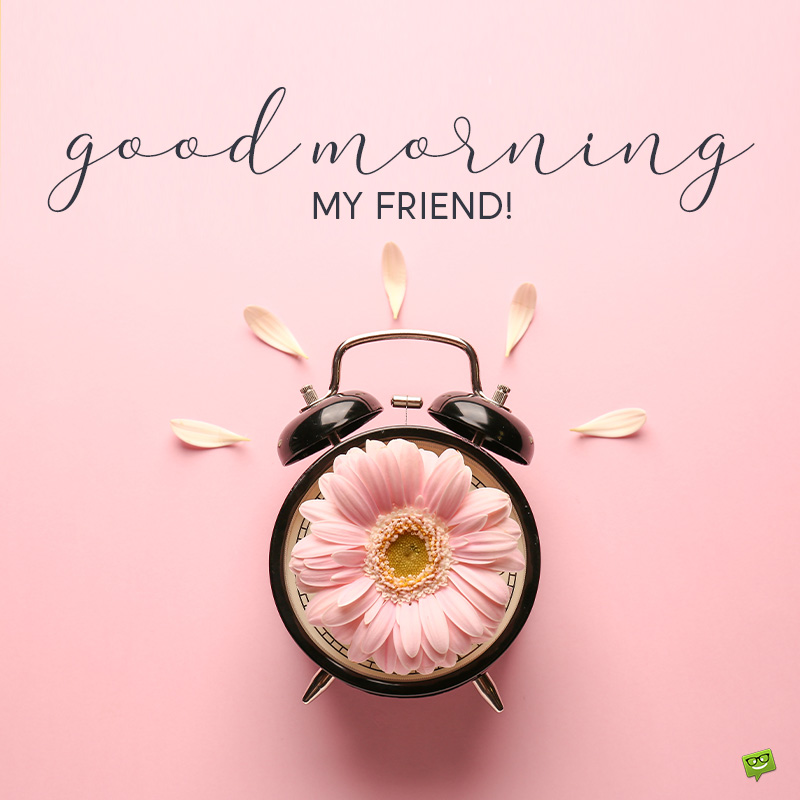 Good Morning Friends A Great Post For The New Day I hope today you've woken up in a good mood, happy, and able to present yourself to the world with your bright eyes and with your most beautiful clothes to bring. good morning friends a great post