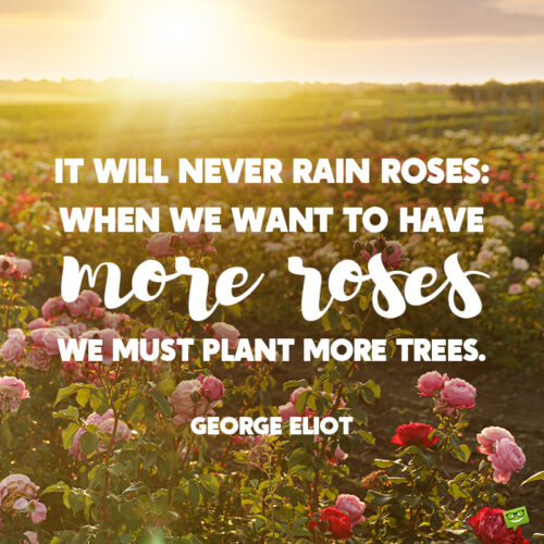 Garden quote to note and share.