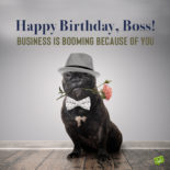 Birthday wish for boss on image with funny dog.