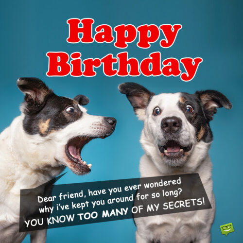 Funny birthday image with dogs.