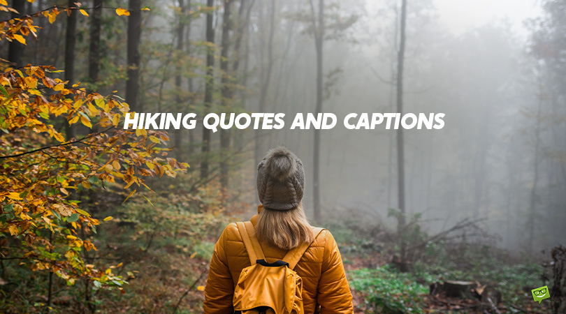 65 Hiking Quotes and Captions for Moments That Count