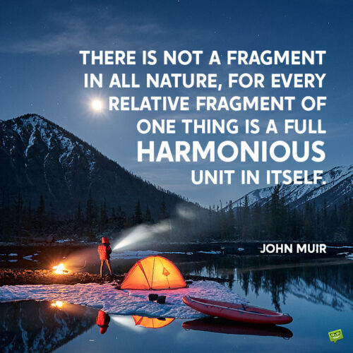 John Muir quote about nature to give you food for thought.