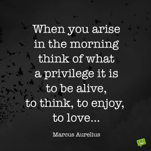 Marcus Aurelius Quote about life and love to make you appreciate all the importan things.