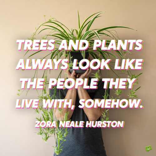 Plant quote to note and share.