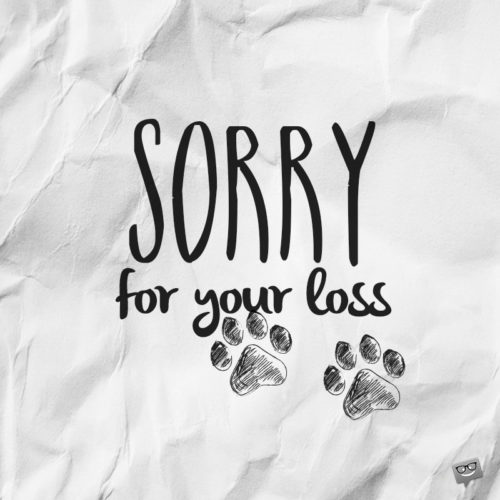 Sorry for the loss of your dog message.