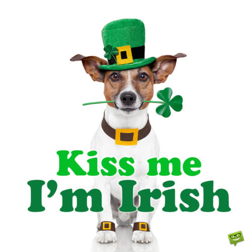 Funny St. Patrick's day image with saying for social media and messages.