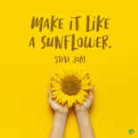 Sunflower quote to note and share.