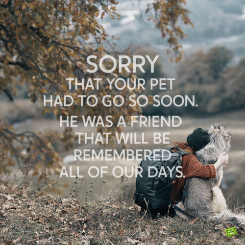 Sympathy message for loss of a pet.