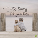 Sympathy message for loss of pet on image. For chats and emails.