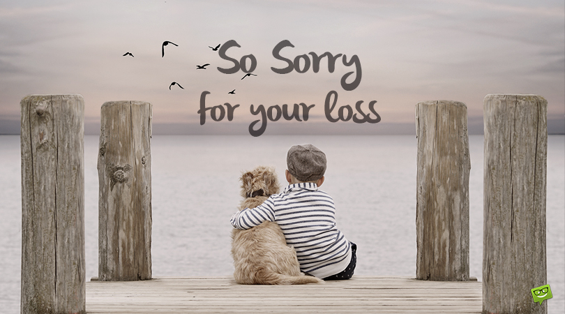 34 Sympathy Messages for the Loss of a Dear Pet