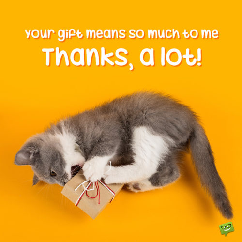 Cute image to help you say thank you for birthday gift on messages, chats, emails and other social media.