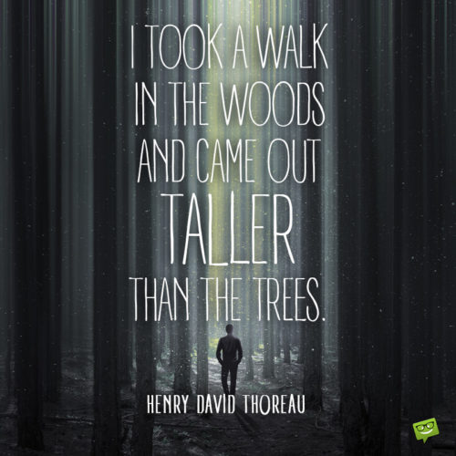 Walking quote by Henry David Thoreau to inspire you to walk in nature.