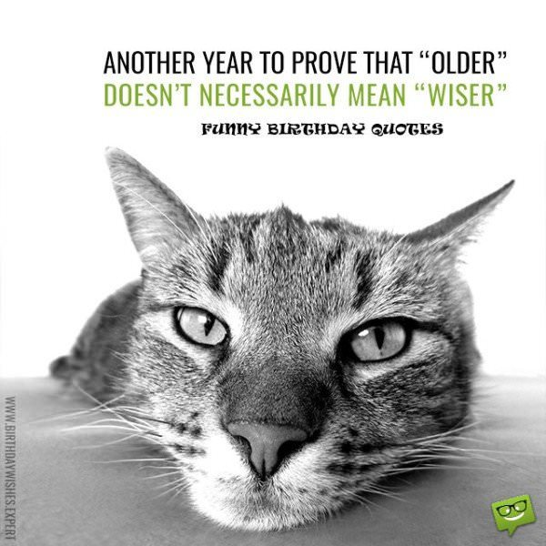 Another-year-to-prove-that-older-doesnt-necessarily-mean-wiser