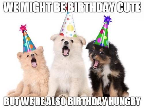 We might be birthday cute, but we're also birthday hungry.