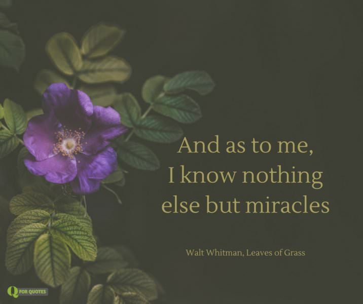 And as to me, I know nothing else but miracles. Walt Whitman, Leaves of Grass