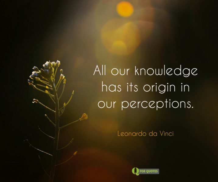 All our knowledge has its origin in our perceptions. Leonardo da Vinci