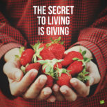 The secret to living is giving.