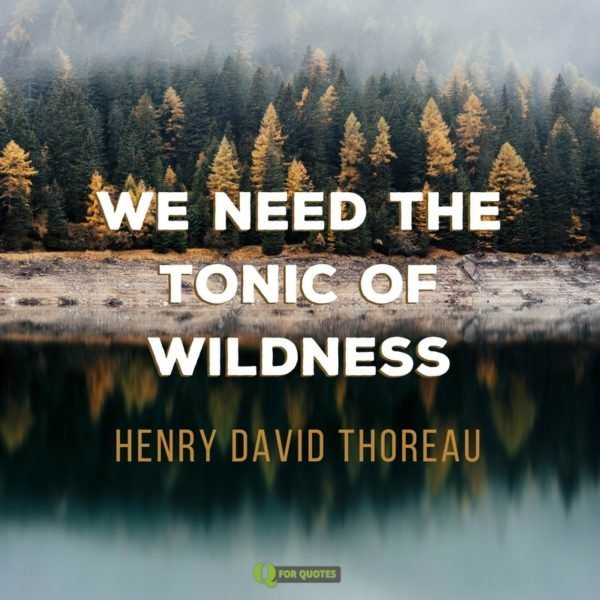 We need the tonic of wildness. Henry David Thoreau