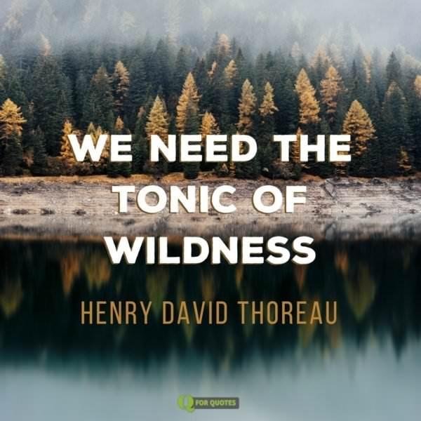 We need the tonic of wildness. Henry David Thoreau
