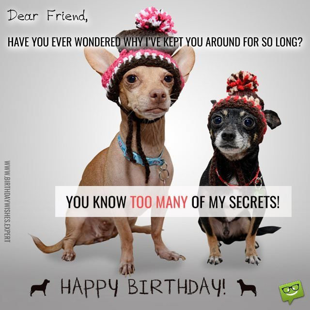 Funny Birthday Wishes For Best Friend Images ~ Funny birthday wishes for your family friends