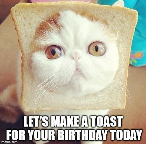 Let's make a toast for your birthday today.