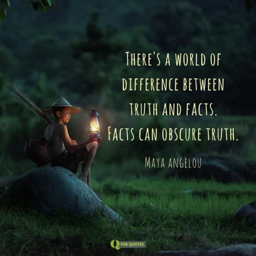 There's a world of difference between truth and facts. Facts can obscure truth. Maya Angelou