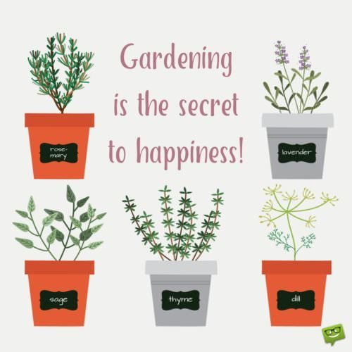 Gardening is the secret to happiness.