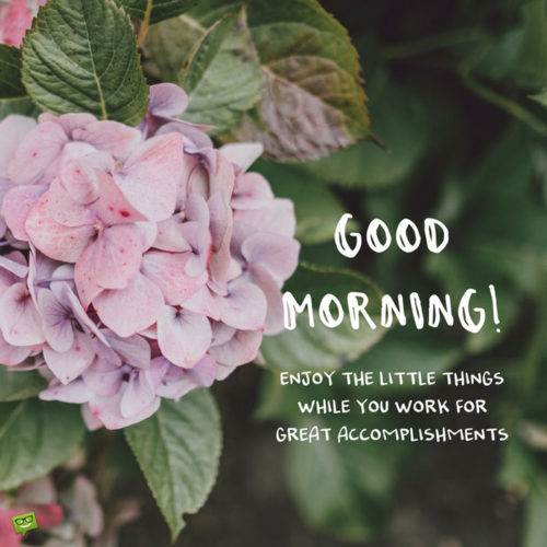 Good Morning. Enjoy the little things while you work for great accomplishments.