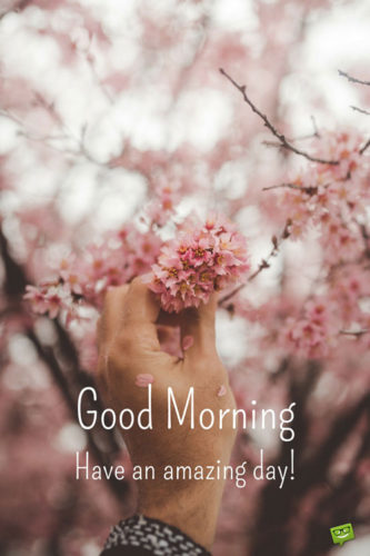 Good Morning. Have an amazing day!