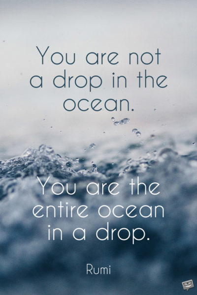You are not a drop in the ocean. You are the entire ocean in a drop. Rumi