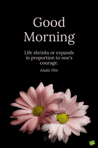 Good Morning. Life shrinks or expands in proportion to one's courage. Anais Nin