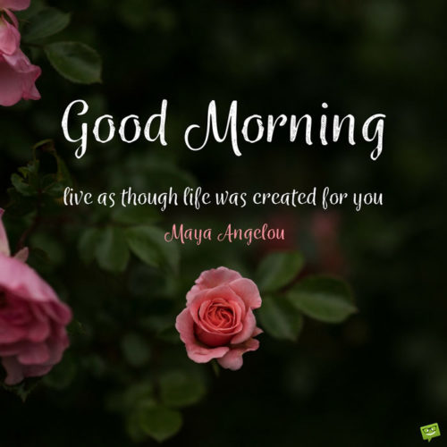 Good Morning. Live as though life was created for you. Maya Angelou
